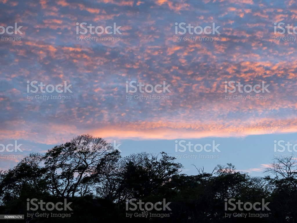 Clouds at Sunset royalty-free stock photo