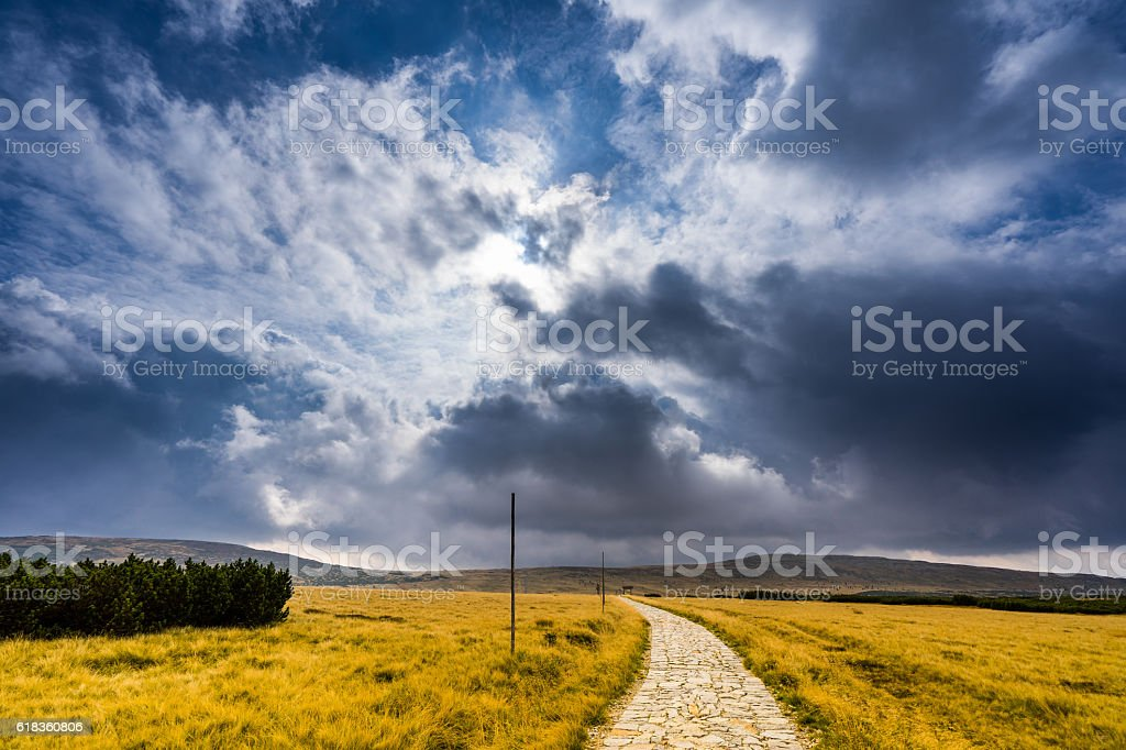 Clouds gathering at path between yellow grass field stock photo