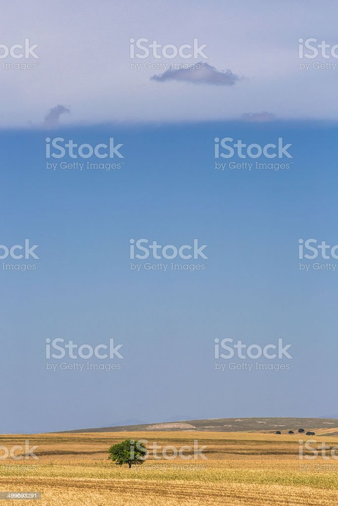 clouds on fields royalty-free stock photo