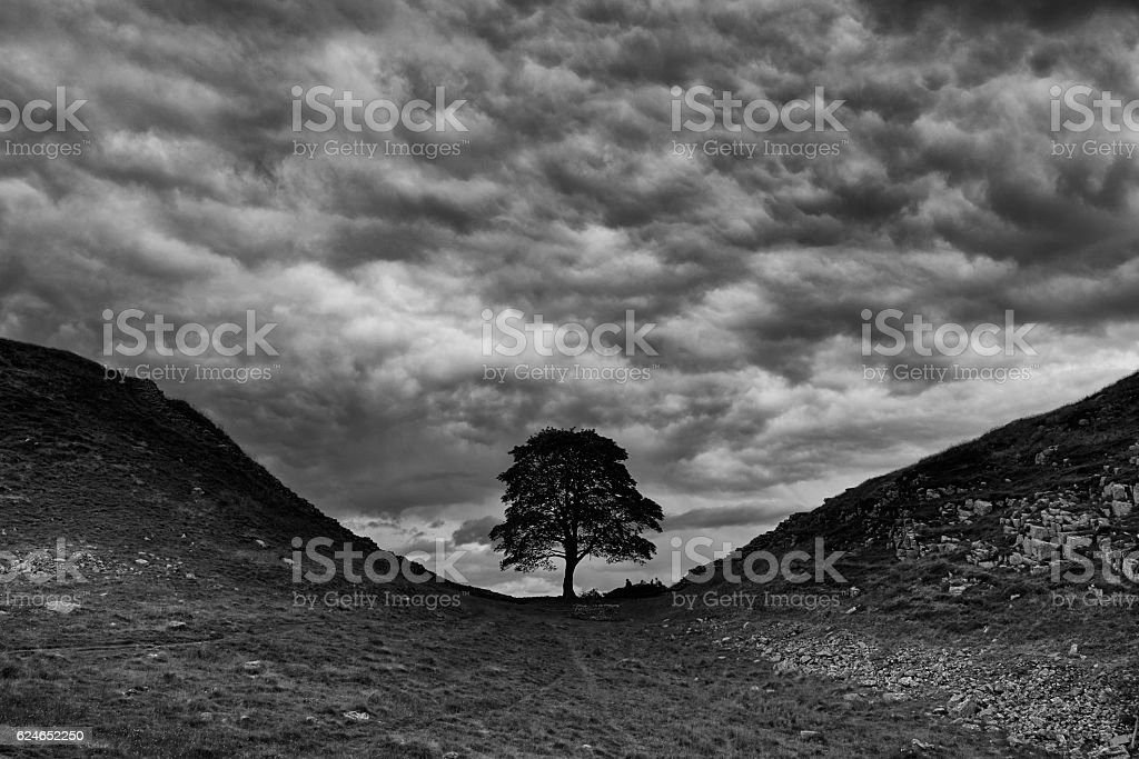 Clouds Over Sycamore Gap And Hadrian's Wall stock photo