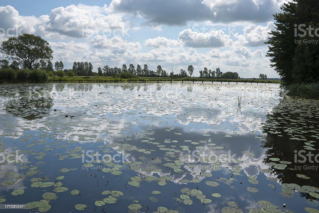 雲湖の周りに反映されています。 ロイヤリティフリーストックフォト
