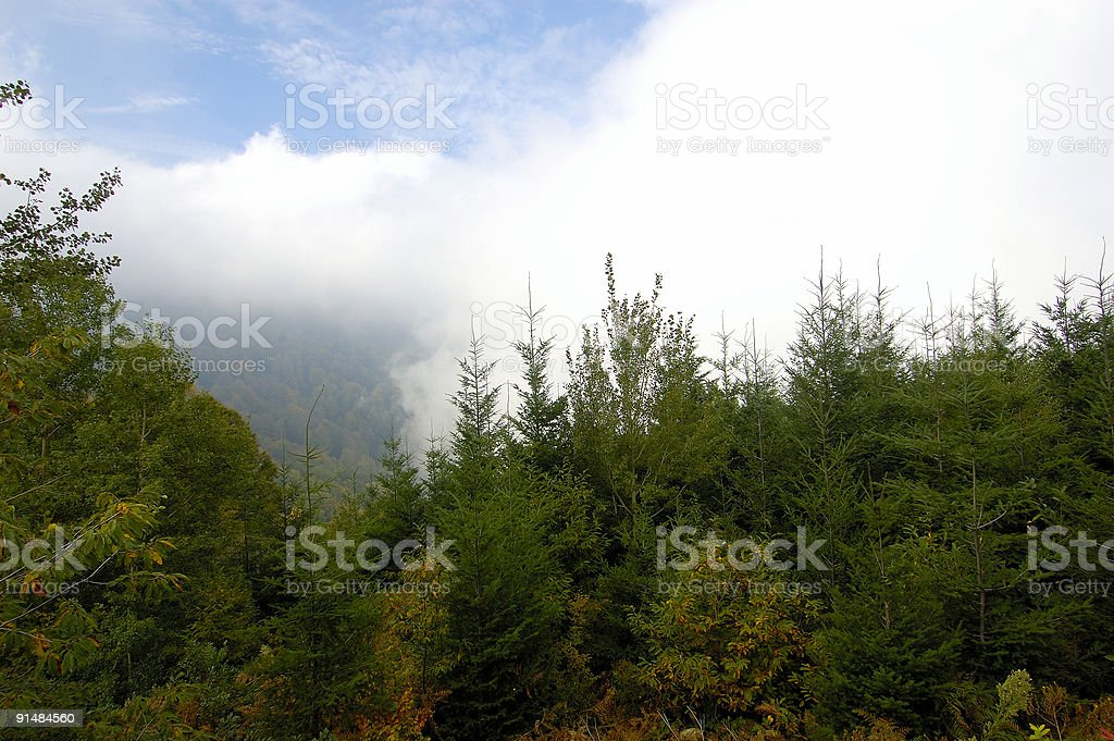 cloudy and foggy royalty-free stock photo