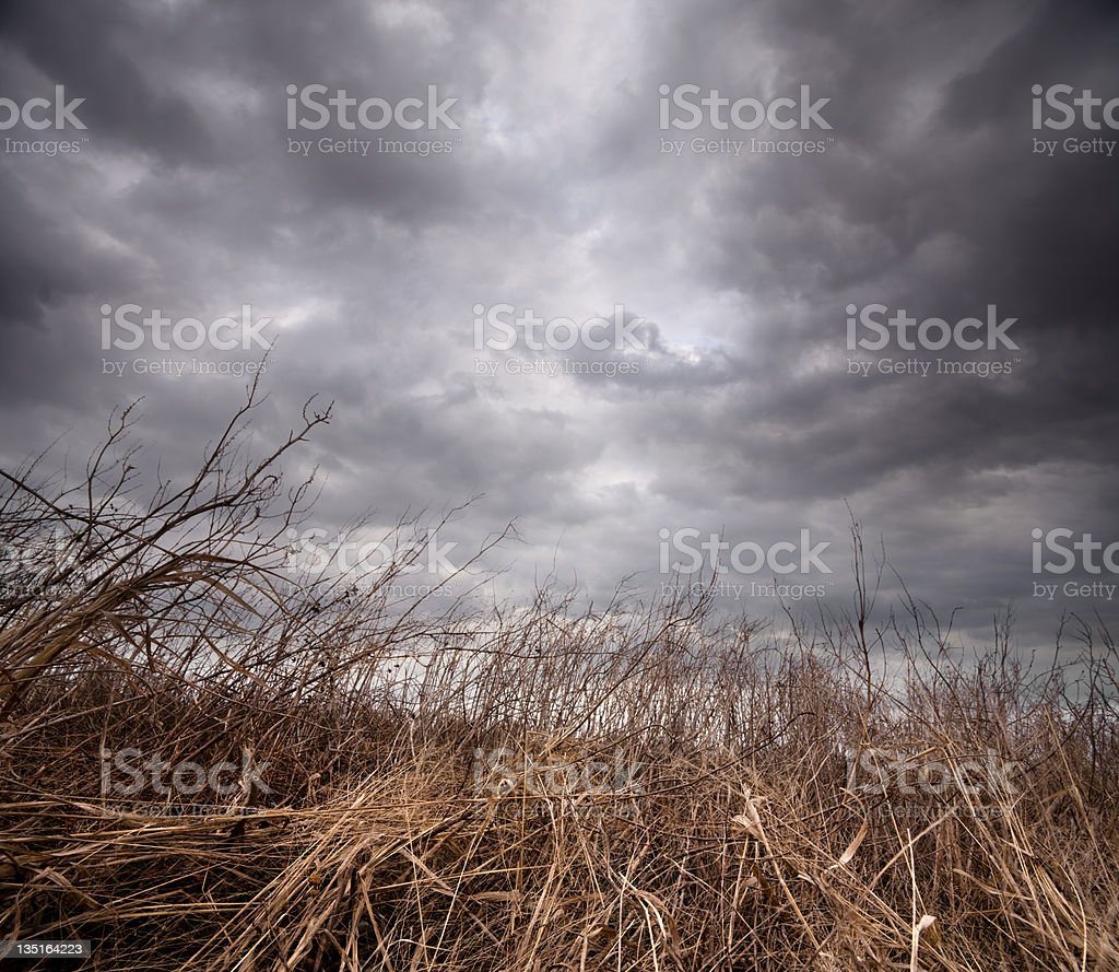 Cloudy Day stock photo