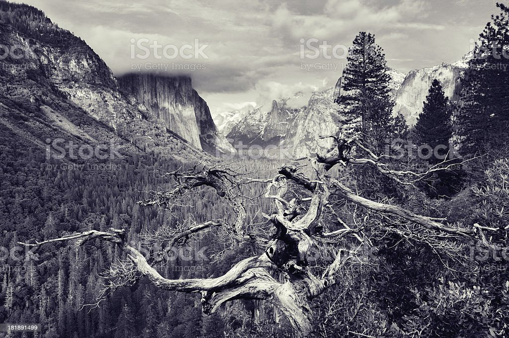 Cloudy evening in Yosemity National Park royalty-free stock photo