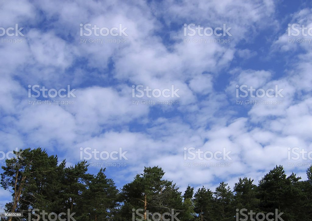 Cloudy imagination royalty-free stock photo
