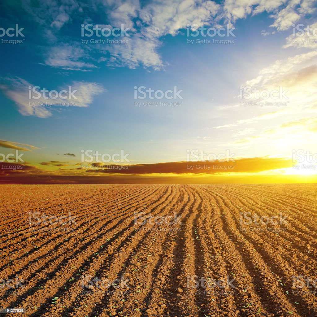cloudy sunset and plowed field stock photo