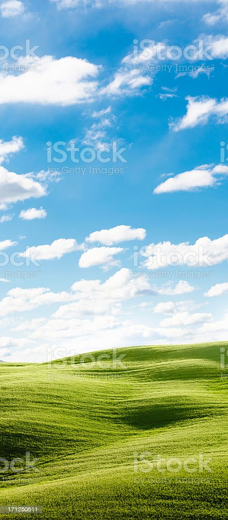 Cloudy tuscany landmark in spring royalty-free stock photo