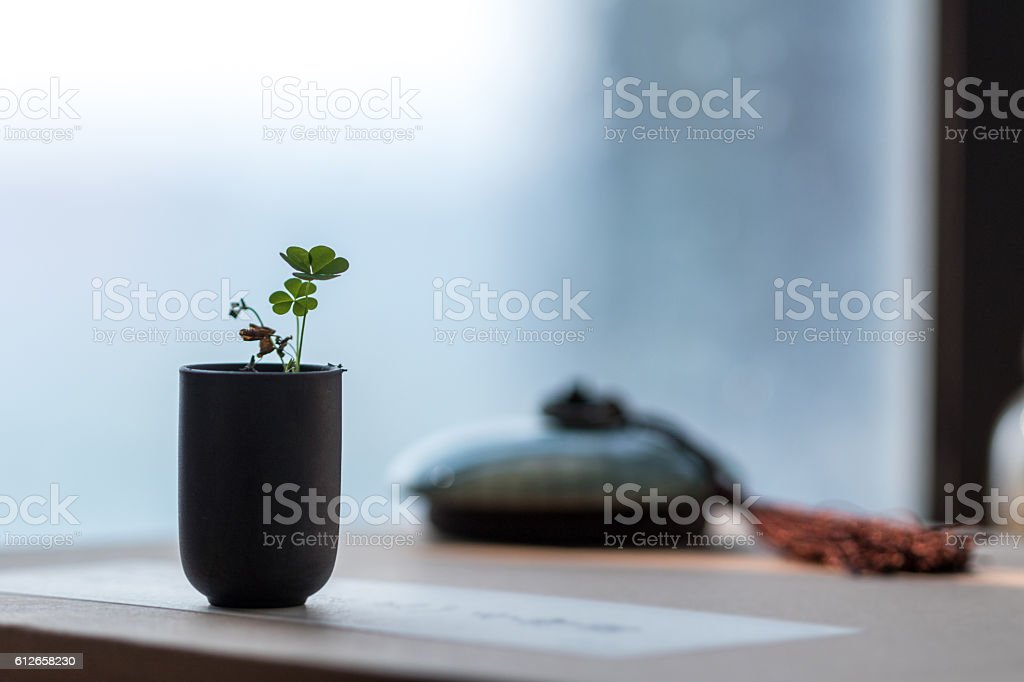 Clover and Book scenes, Chinese culture stock photo