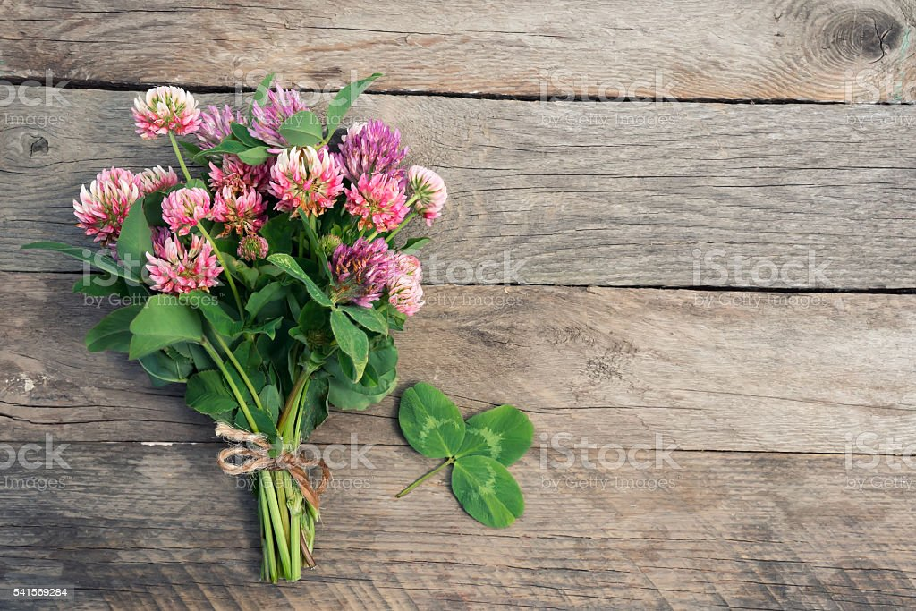 Clover bouquet with shamrock foto de stock royalty-free