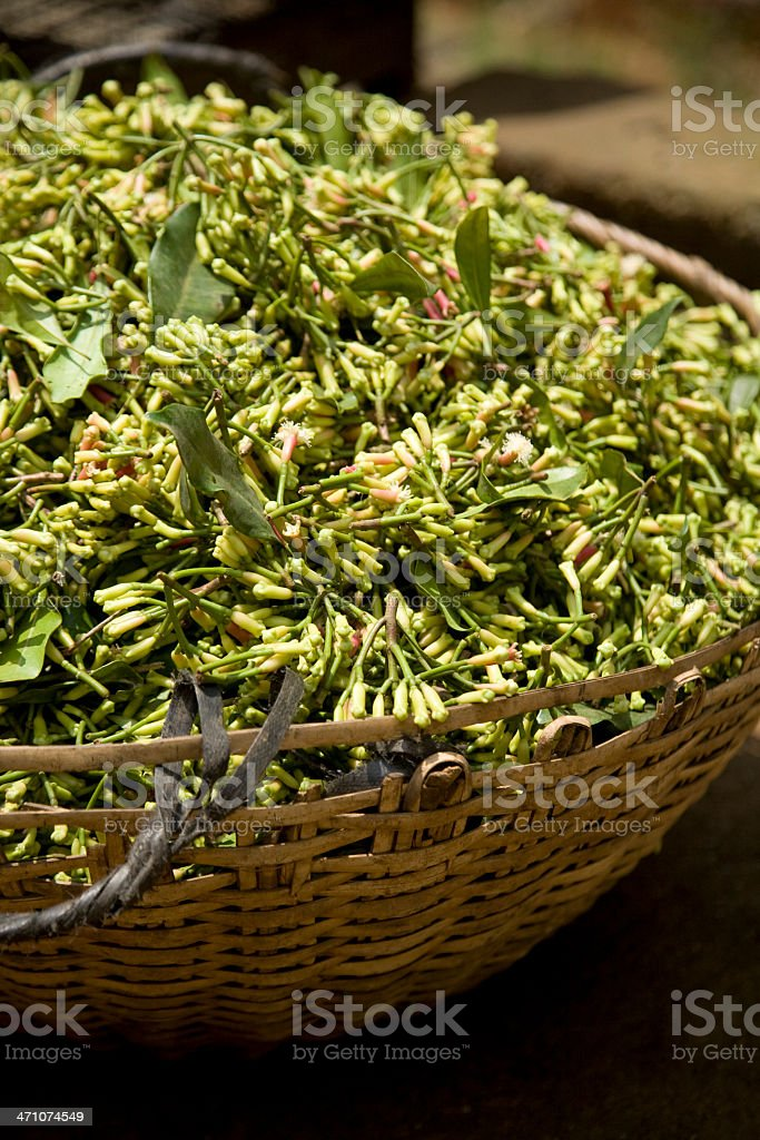 Cloves Drying in a Basket royalty-free stock photo