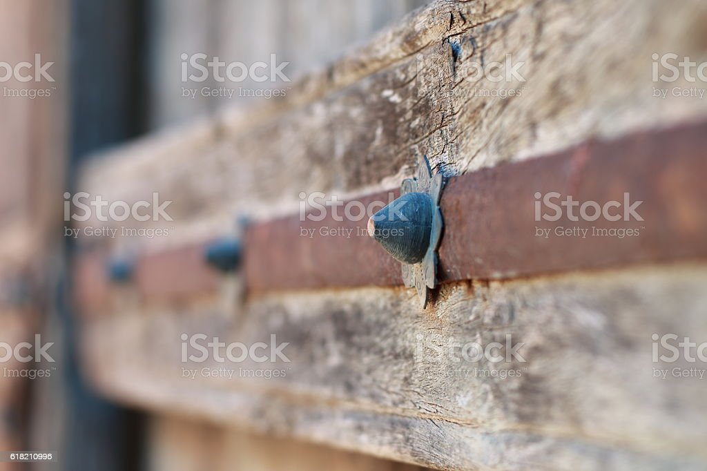 Cloves of an old wooden door stock photo