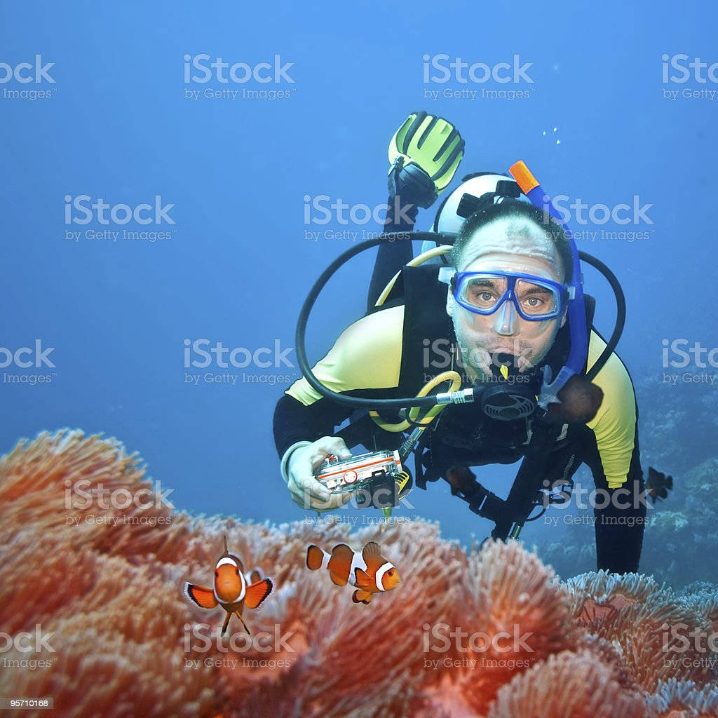 Clownfishes and photographer royalty-free stock photo
