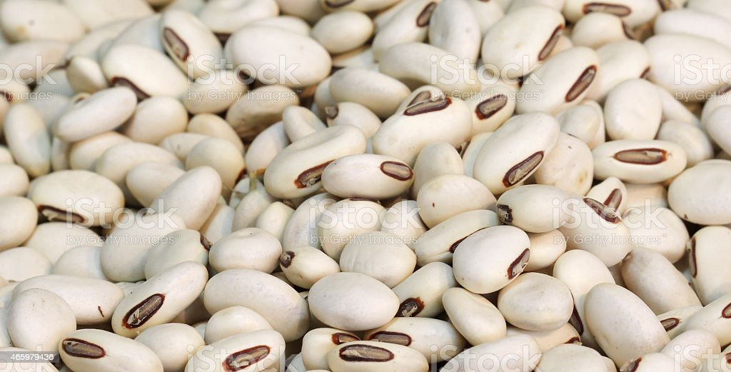 clsoe up white bean background stock photo