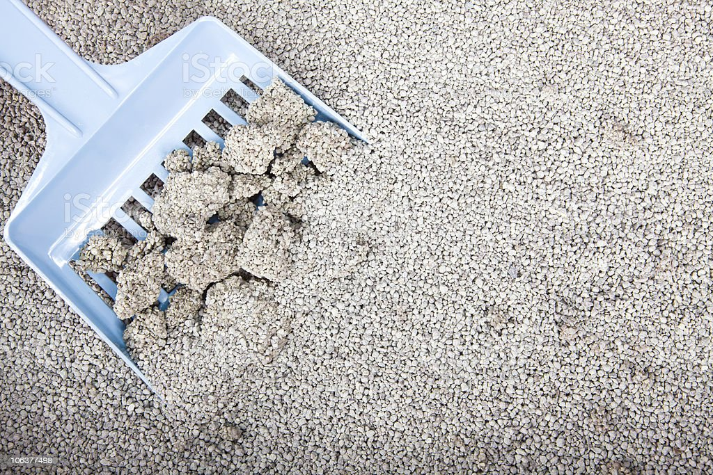 Clumping cat litter being scooped up stock photo