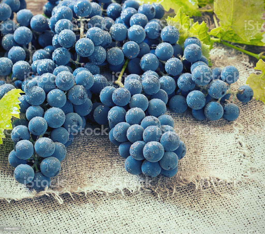 Cluster of Blue Grapes on Old Wooden Background Toned Image stock photo