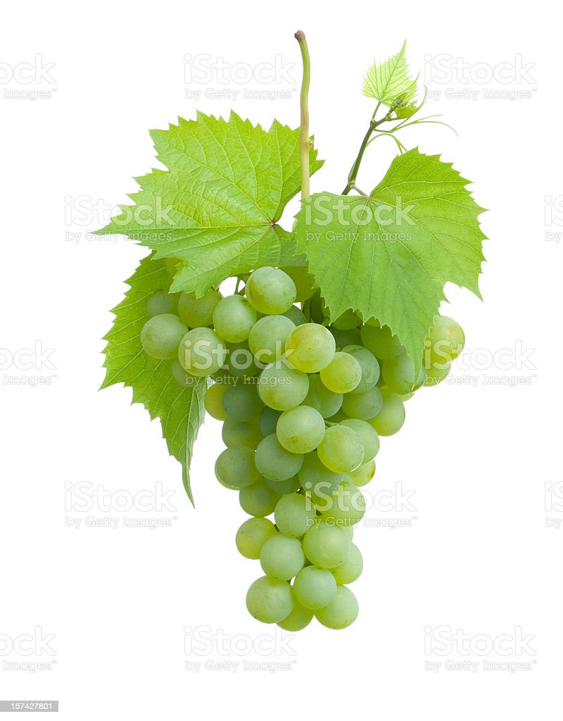 Cluster of green grapes on a plain white background stock photo