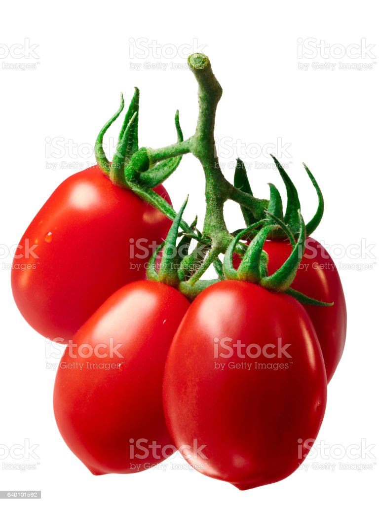 Cluster of plum Roma tomatoes, path stock photo