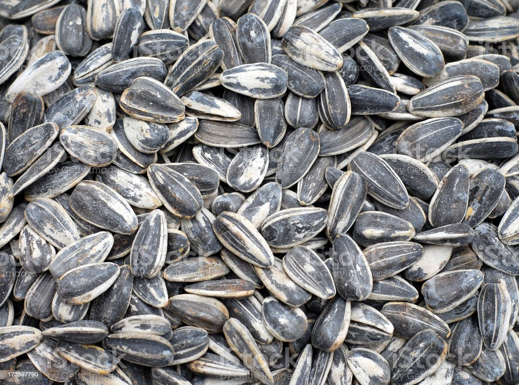 Cluster of sunflower seeds overlapping one another royalty-free stock photo