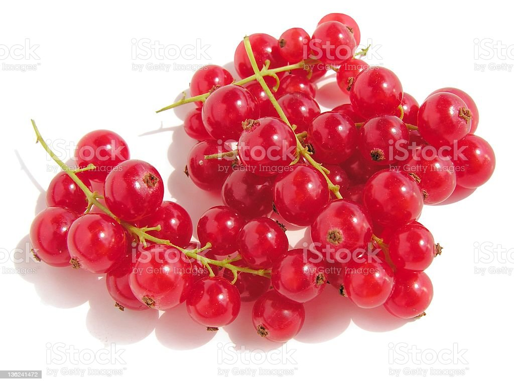 clusters of red currants stock photo