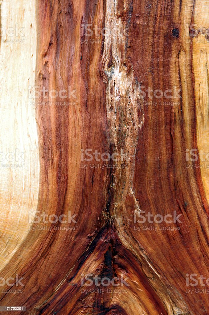 clutch engagement wood stock photo