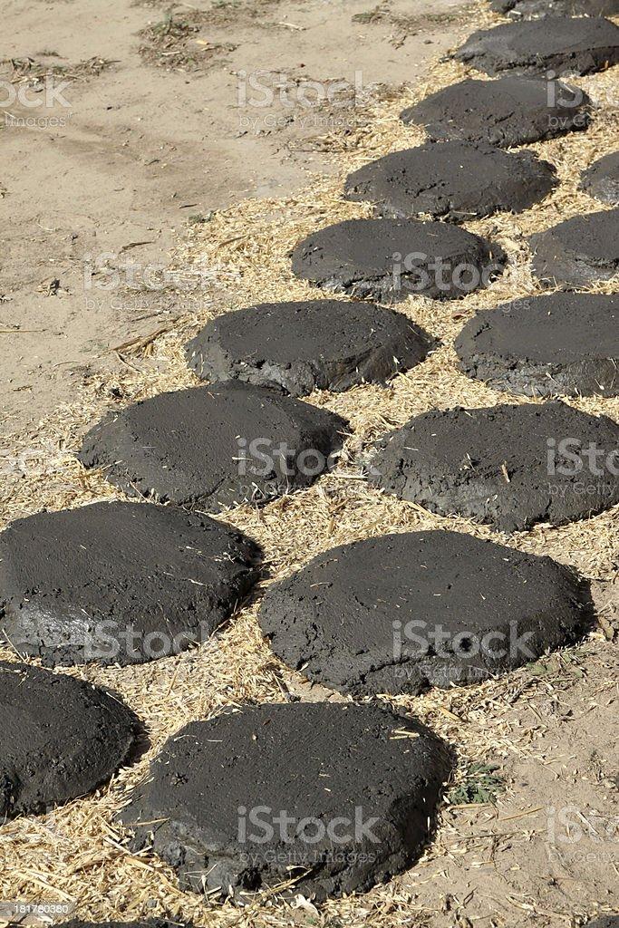coal bread fuel stock photo