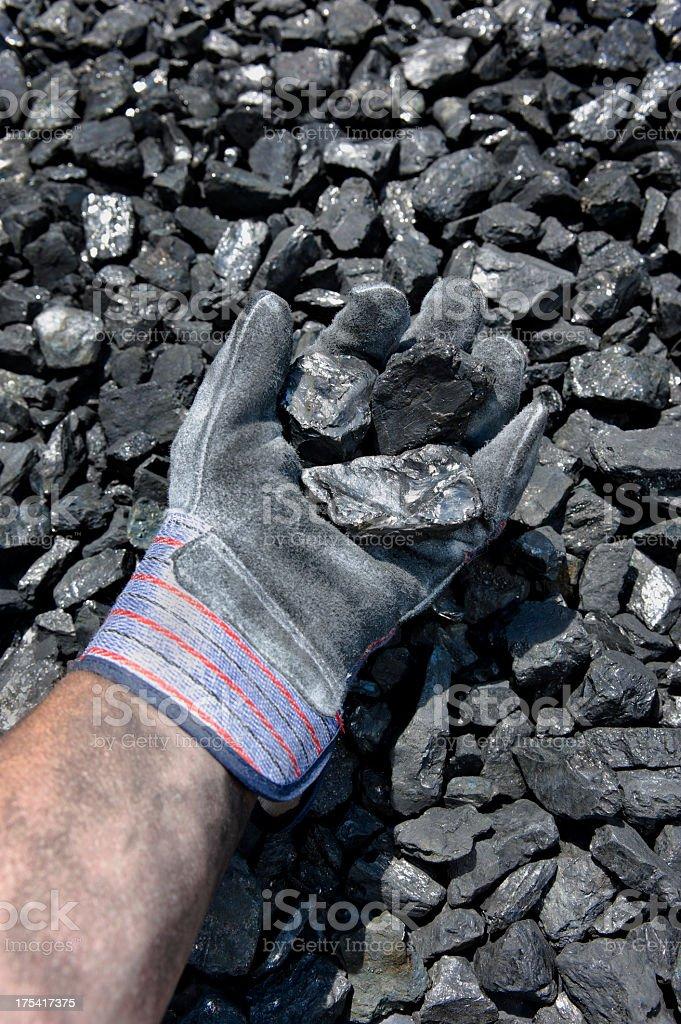 Coal in Hand stock photo