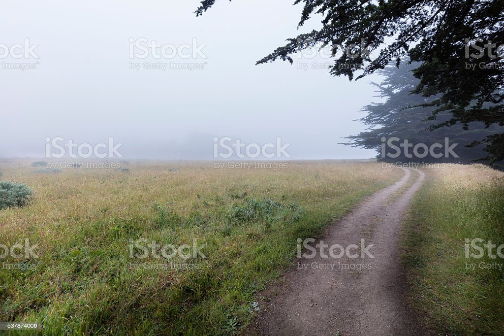 Coast in fog stock photo