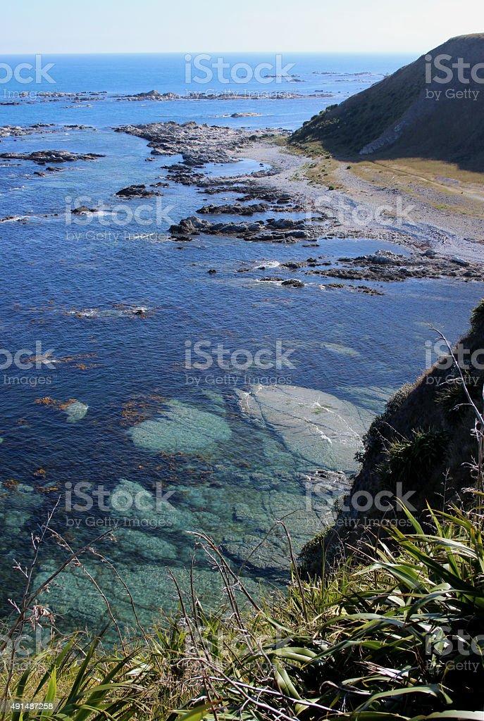 Coast in Kaikoura stock photo