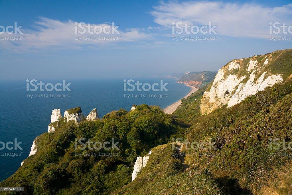 Coast near Beer, Devon, UK. stock photo