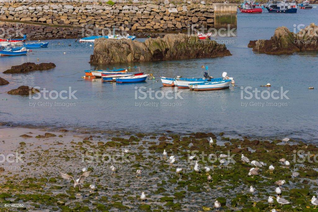 Coast of Cudillero (Asturias, Spain). stock photo