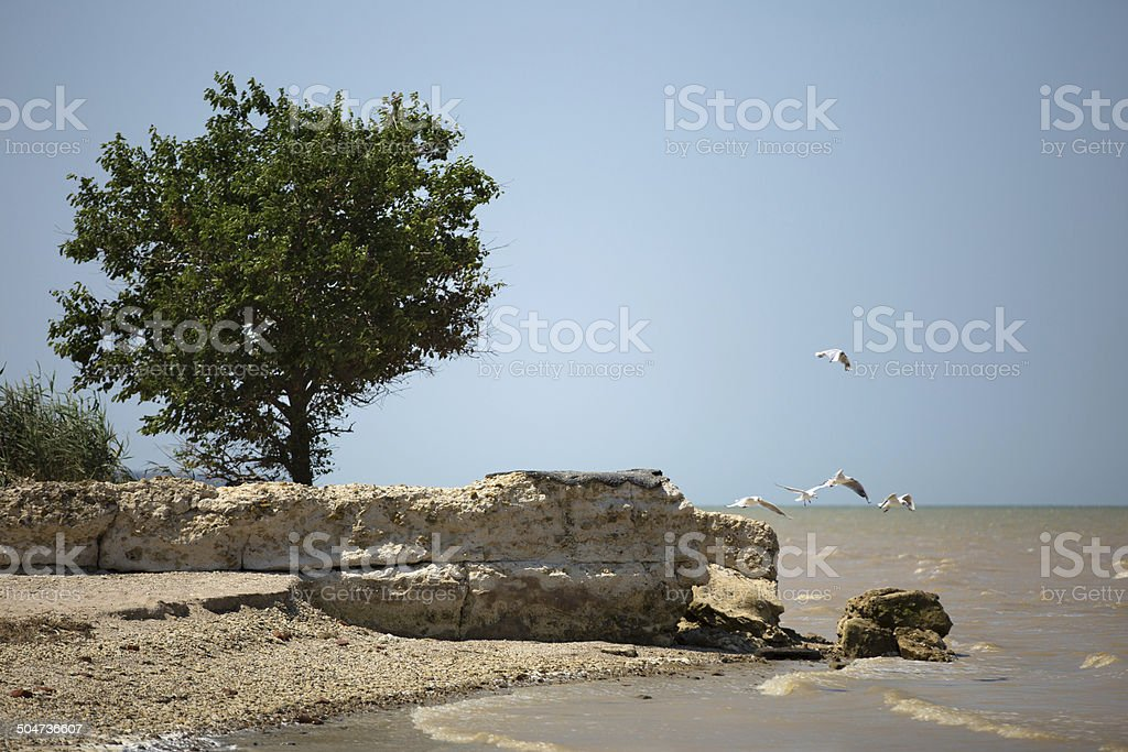 Coast of Greece royalty-free stock photo