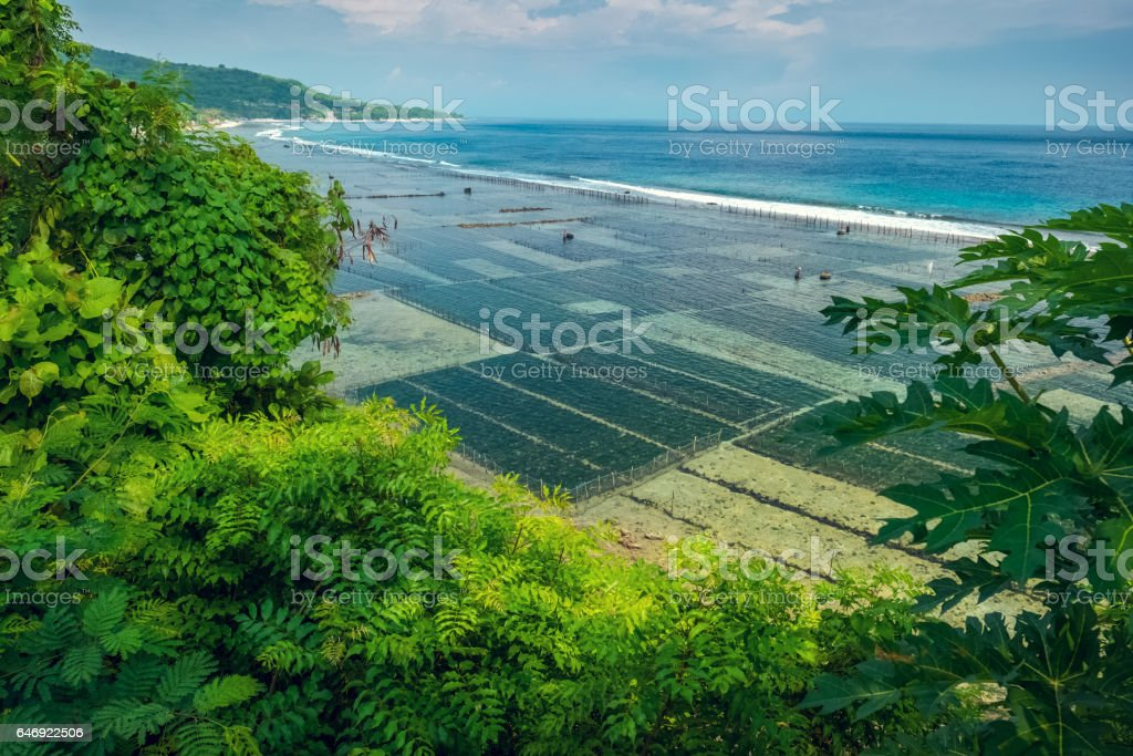 Coast of the island of Nusa Penida stock photo