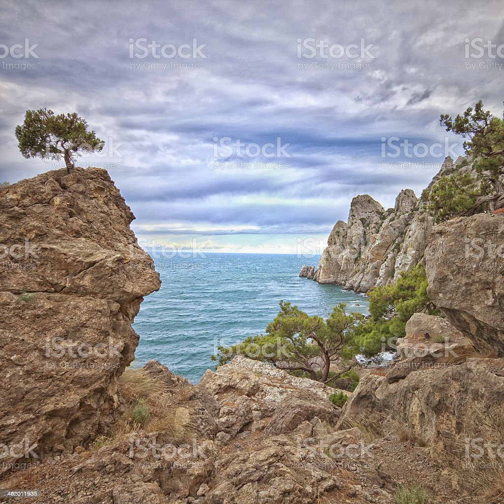 coast of the Sea royalty-free stock photo
