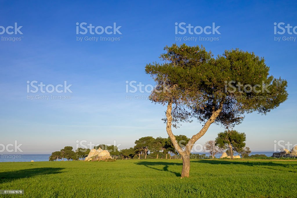 Coast of trullo houses landscape near Polignano a Mare, Italy. stock photo