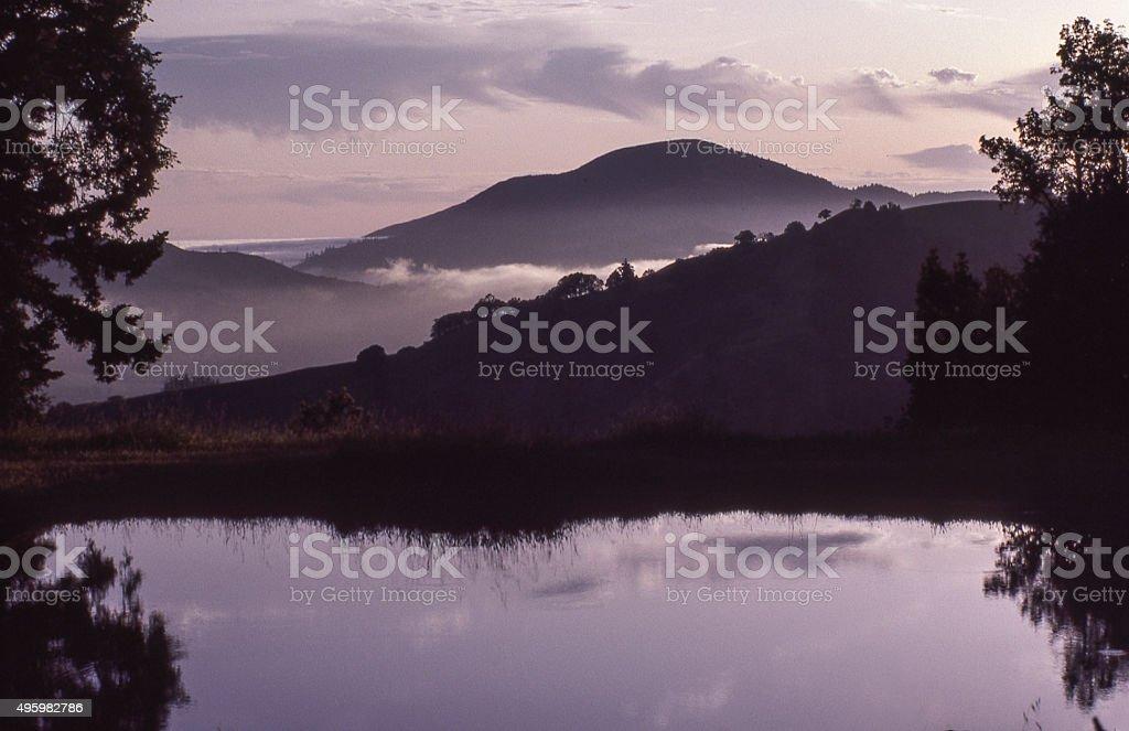Coast Range pond stock photo