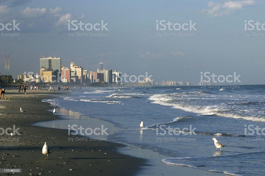 Coastal Cityscape royalty-free stock photo