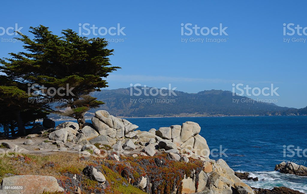 Coastal Cliff at Pebble Beach stock photo