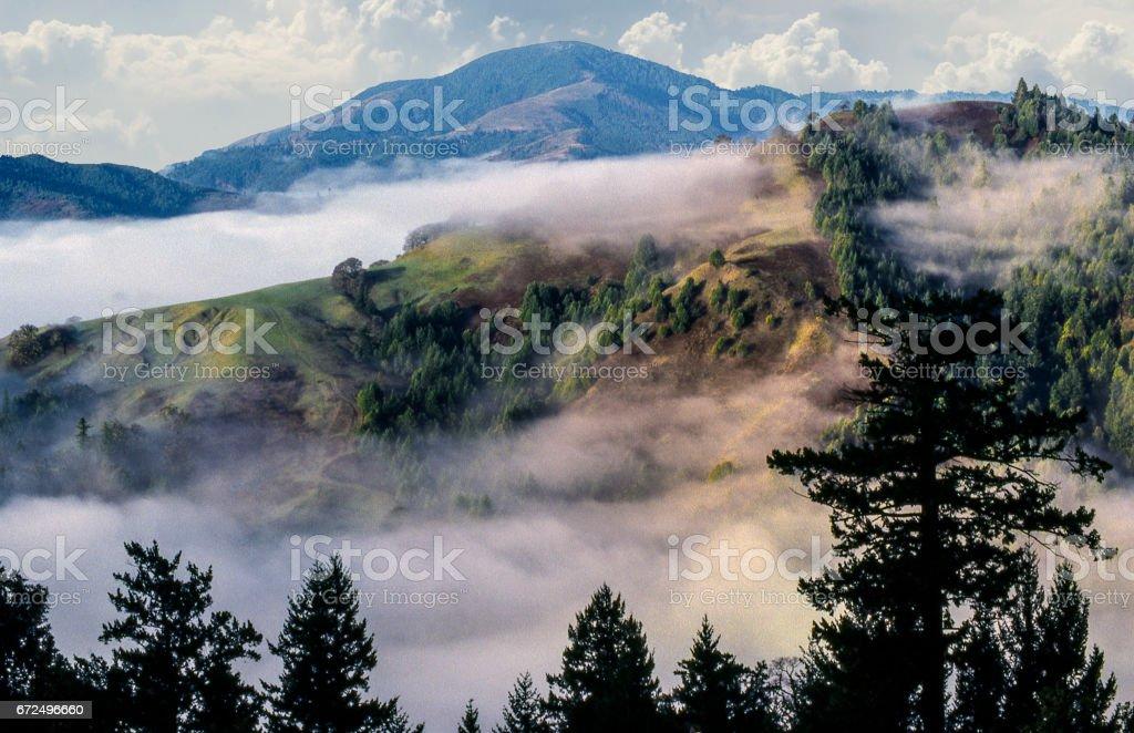 Coastal fog hills stock photo