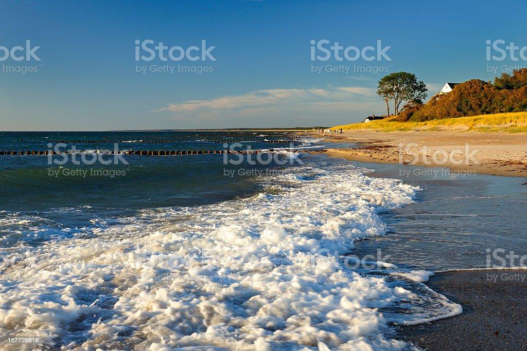 Coastal Landscape, Darß Peninsula, Baltic Sea, Germany stock photo