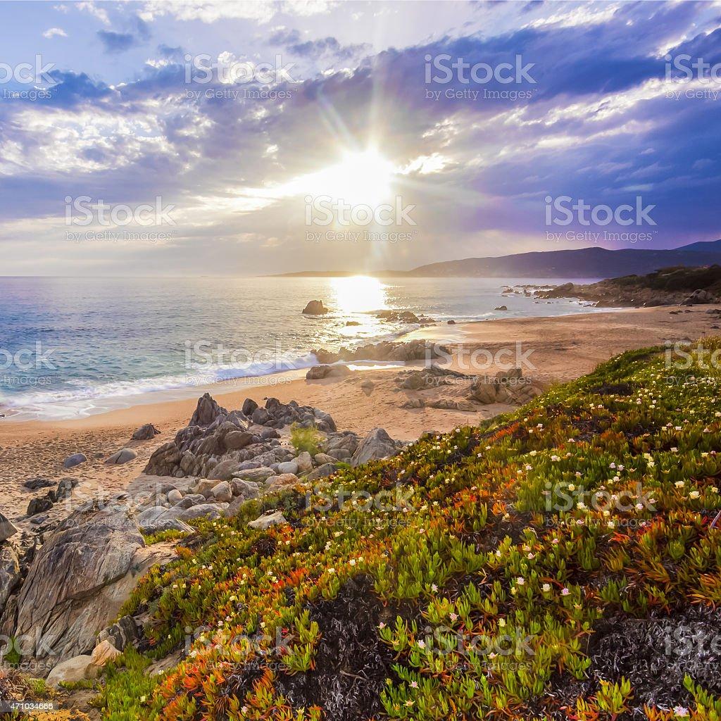 Coastal landscape on Corse, France, Europe. stock photo