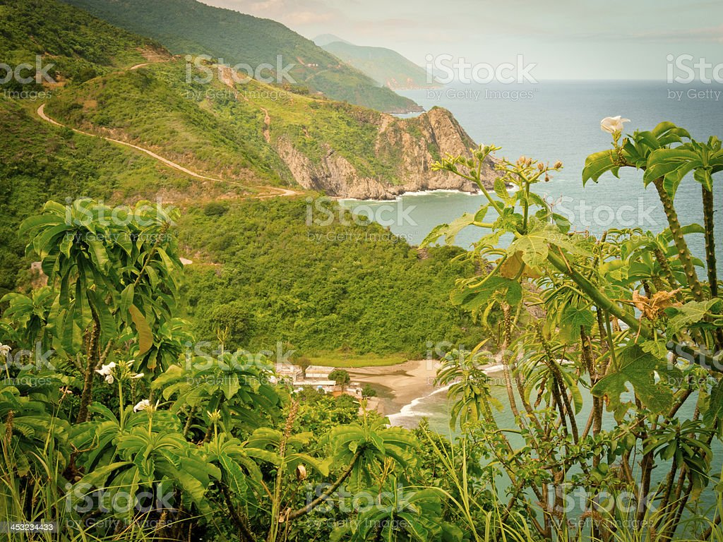 coastal landscape with tropical plants and caribbean ocean, south america stock photo