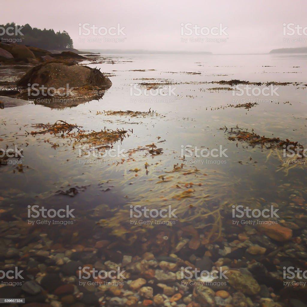 Coastal Maine with stock photo