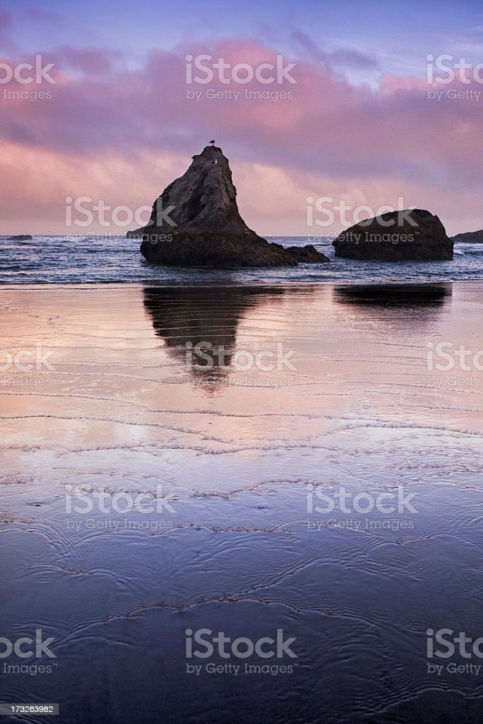 Coastal Oregon at Sunset stock photo