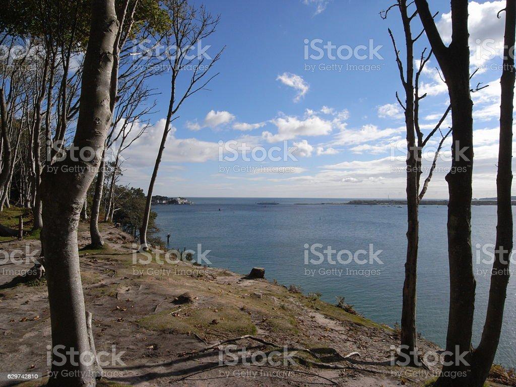 Coastal path stock photo