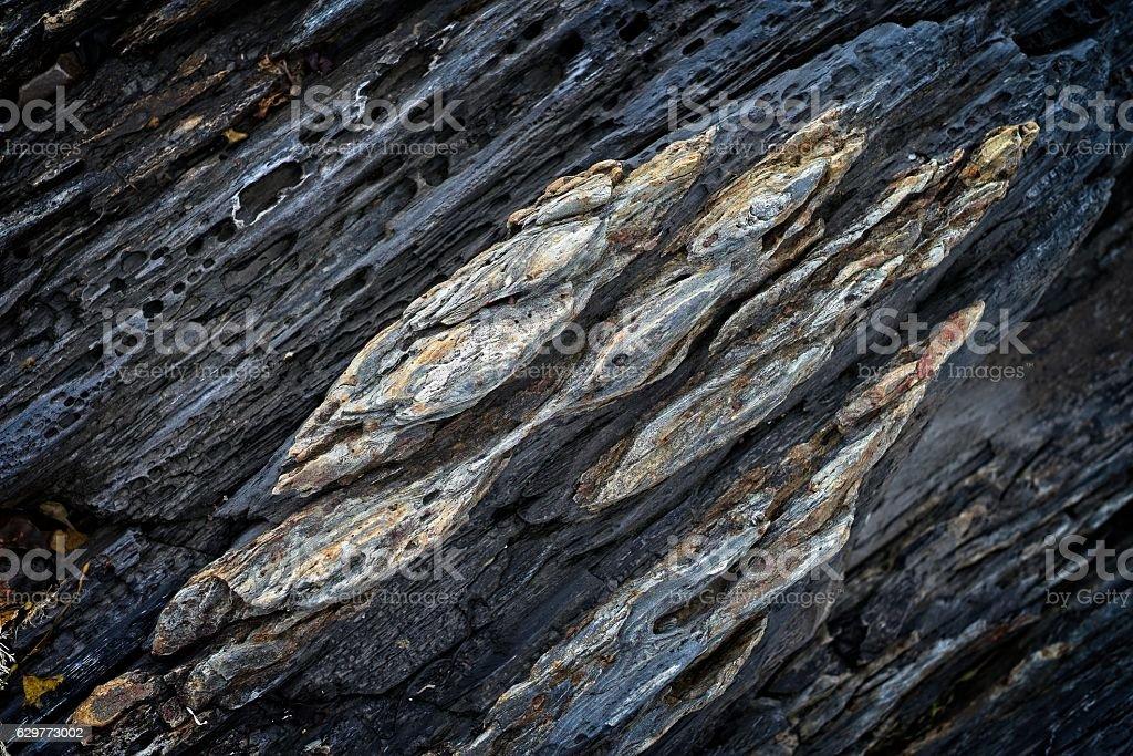 Coastal rock texture, Lunenburg, Nova Scotia. stock photo