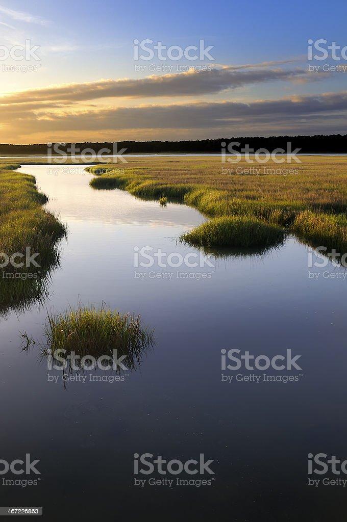 Coastal Salt Marsh at Sunrise royalty-free stock photo
