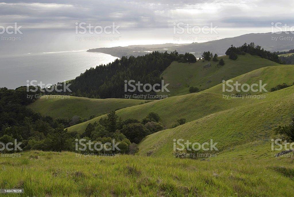 Coastal Spring stock photo