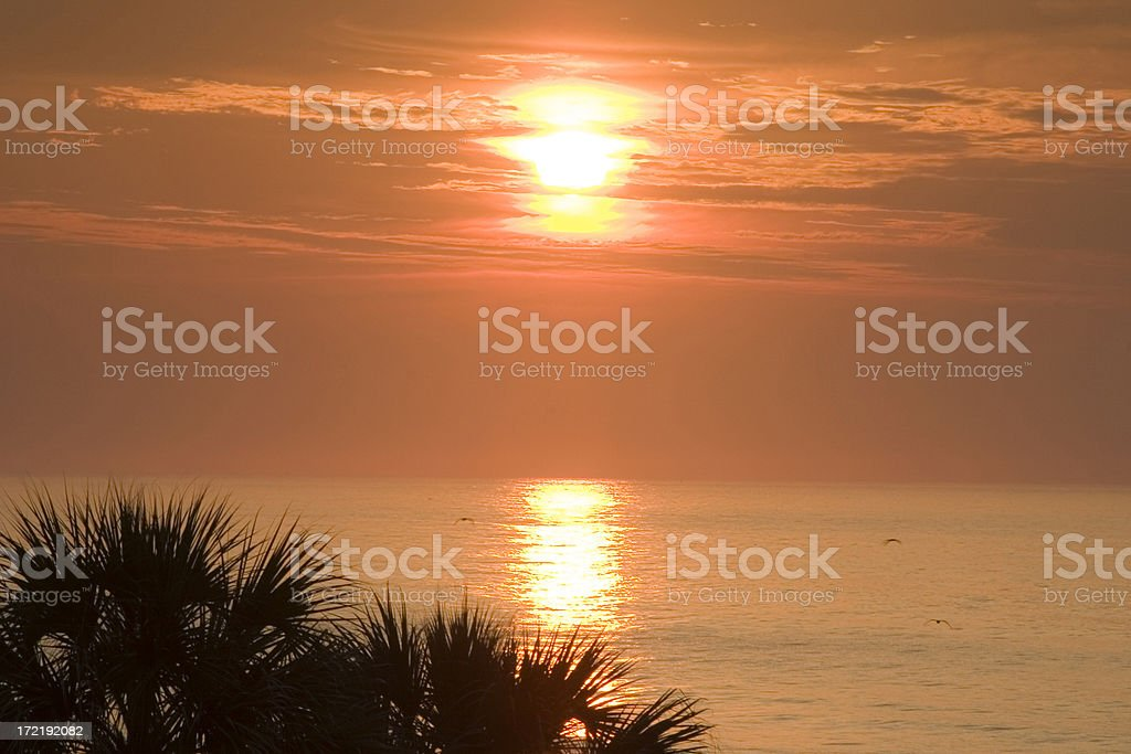 Coastal Sunrise #2 royalty-free stock photo