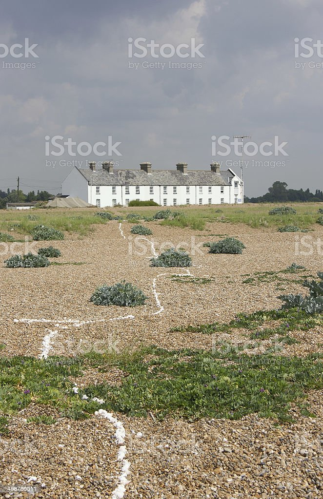 Coastal vegetated shingle, Shingle Street, Suffolk stock photo