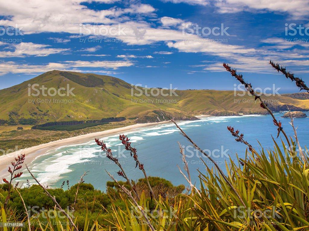 Coastal view Otago stock photo